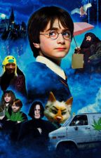 Harry Pot and the Philosopher's Crippling Heroin Addiction by budgiee