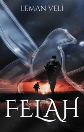 FELAH by lemveli