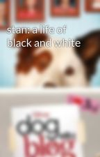 stan: a life of black and white by dogwithablogstan