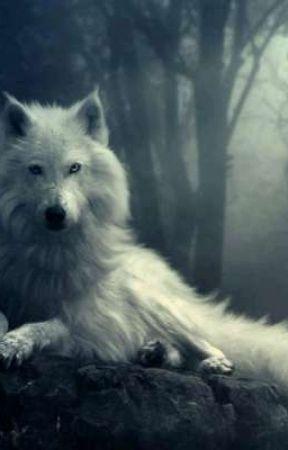White Wolf by Alezinga