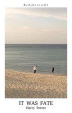 It Was Fate¹ by redcherrie01