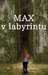 MAX v labyrintu cover