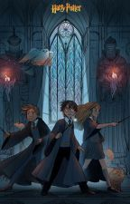 Can A Phoenix Love A Lion? (Hermione Granger x Male Reader) by Antovirlou