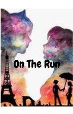 On The Run - A Miraculous Fan Fiction by LunarPup26
