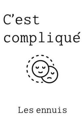 C'est compliqué by Ermenfroy