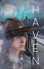 Haven | apply fic  by 1-800-McCall