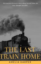 The Last Train Home by Spruce_Goose