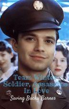 Team Winter Soldier, Assassins in love.  by SavingBuckyBarnes