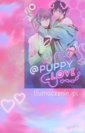 Puppy Love tłumaczenie pl by sayonara__yume