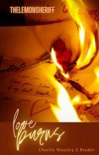 Love Burns (Charlie Weasley X Reader) by TheLemonSheriff