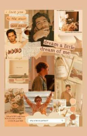 1D Smut book by -watermelonsunshine-