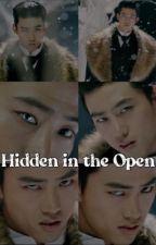 Hidden in the Open by YasminMarcelo