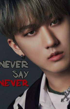 never say never    changbin x reader •ff•  by justxbethany