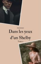 Dans les yeux d'un Shelby | Tome II by sweetstoryc