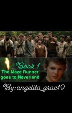 The Maze Runner goes to Neverland by angelita_grac19