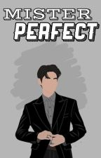 Mister Perfect [𝗢𝗡 𝗚𝗢𝗜𝗡𝗚] by stitchizy