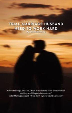 Trial Marriage Husband: Need to work hard  by jjeonvav