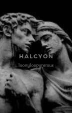 HALCYON ∘ harry potter au by loonyloopyremus