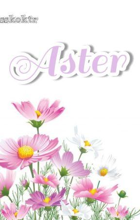 Aster by sskoktr