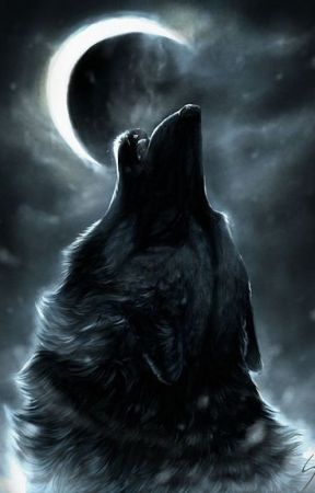 A guide to Wolf Packs - R/P by _Mina--