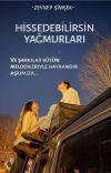 HİSSEDEBİLİRSİN YAĞMURLARI cover