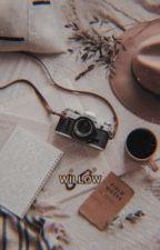 Willow  by miapotatobean