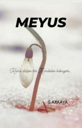 MEYUS by Masem43