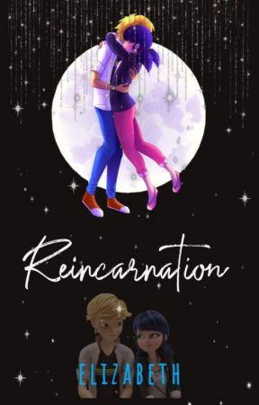 Reincarnation {A Miraculous Ladybug AU} by HawkDaddykinsRailMe