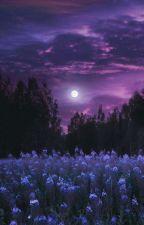 Večerní konverzace Sama a Matyáše (Moonattem oneshots) by Jackie_smtv