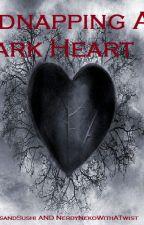 Kidnapping A Dark Heart by DiamondsandSushi