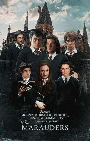 Merodeadores y Mortifagos by _Lunatica_Black