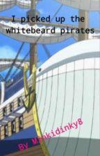 I Picked Up The Whitebeard Pirates  by MinkyDinky8