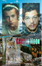 Canyon Moon (larry stylinson, Mpreg) di _Annina99