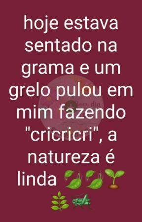 gatinho  by thevansfamily