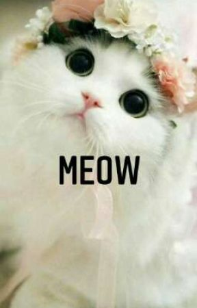 meow by Animelovers-and-Army
