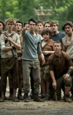 THE MAZE RUNNER SMUTS by Hopie1881