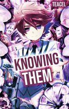 Inazuma Eleven I reader insert by ice_p0p