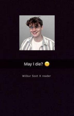 Wilbur Soot X Reader by june_pop