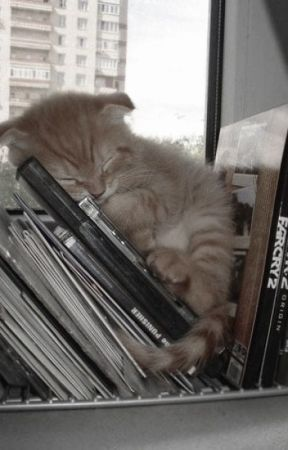 The Boy He Saw on His Feed~ Seungjin by Yeonderellasbunny