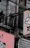 。菊花 ゙ 𝟕 𝐃𝐀𝐘𝐒 ⸝⸝ 𝗈𝖼 𝗌𝗈𝗅𝗈𝗂𝗌𝗍 cover