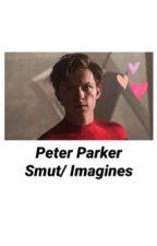 Peter Parker Smut & Imagines by ljcb19