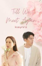 Till We Meet Again by kaynrz