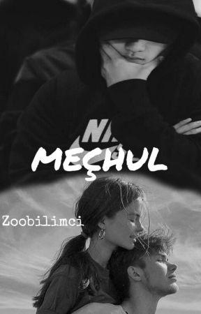 MEÇHUL by ZooBilimci