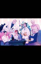 One Piece x y/n by preciousonly1