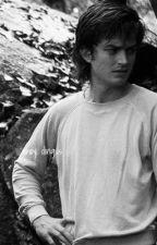 Ahoy, Dingus - Steve Harrington x Reader by _aavocadotoastt