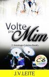 Volte pra mim - 1ª Antologia Coletivo Book's cover