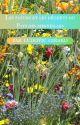 Les fleurs et les déchets du Pays des merveilles by