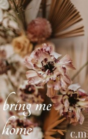 bring me home by chanellemwriting