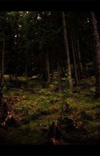 Skogen by Thea-WB