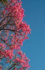 Contigo y por ti  by CarolinaPerezFavela